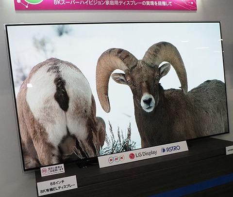 NHK 05_o