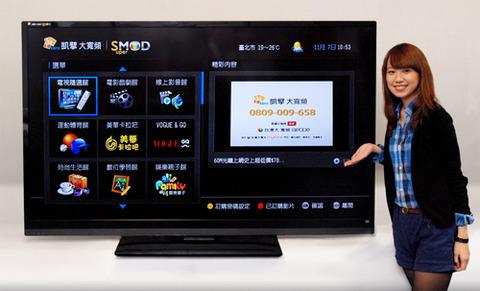 本ハイ テレビ