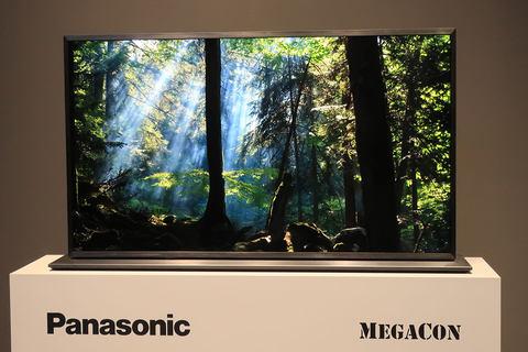 Panasonic IMG_9432_s