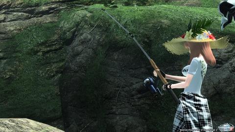 森林の釣り
