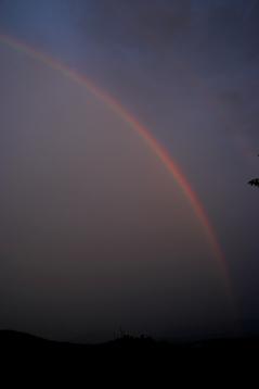 ダラムサラの虹3
