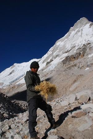 ケルサンが集めたチベットの藁