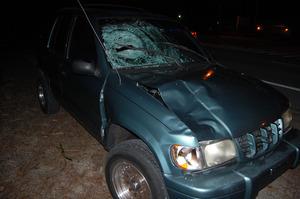 ジグメ・ノルブ氏をはねた車