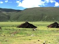チベット 遊牧民のテント