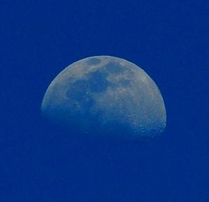 昼間の月、ドバンにて