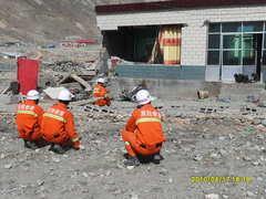 中国地震救援隊がチベッタン・マスティフを救助?する現場
