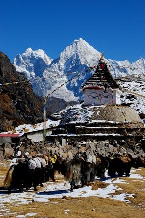 ターガの仏塔とヤク