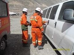 ジェクンド地震、チベタン・マスチフ救助?