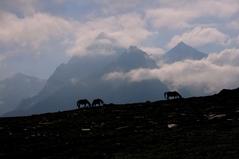 アシャギリ 6100m