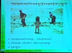 24.10.09 ダラムサラ、ニマロプタ、カルマパ環境講座4