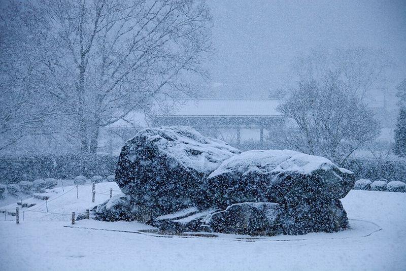 2281 大口の真神原に降る雪は ・...