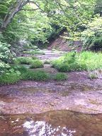 釜淵の滝の上流
