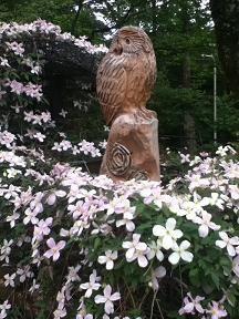 ばら園のフクロウ