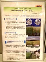 ポスター研究発表2