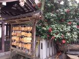 鳥越神社3