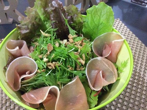 アクアポニクスで自家製野菜