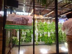 次世代農業EXPO出展