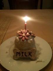 ミルクちゃんのケーキ