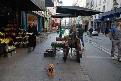 パリの街角のお花屋さんCOCO