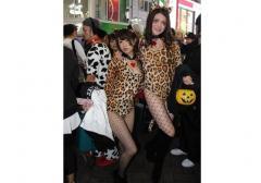 ハロウィン 乱れる渋谷 「露出する女」「触る男」どっちが悪い?