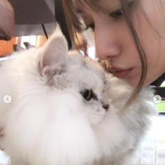 後藤真希、愛猫とのツーショットに賛否の声「ほっこりした」「好感度狙い?」