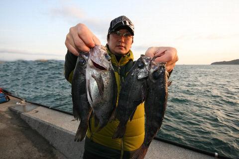 turishima 073