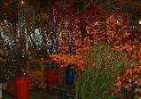 flower market1