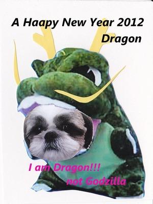dragon2012