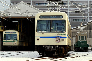 rie16567