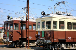 rie17641