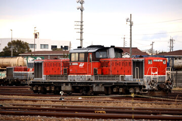 rie24538