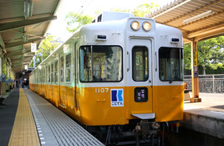 rie17564