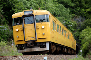 rie17453