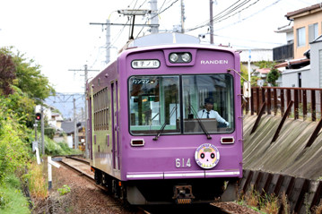 rie20786
