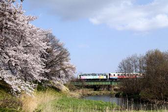 rie2007.jpg