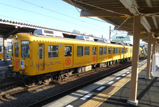 rie17560
