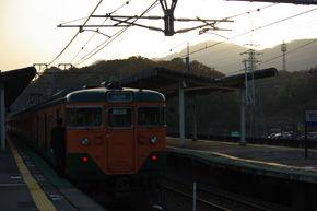 rie597.jpg