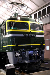 rie16374