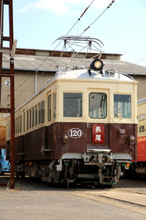 rie17528