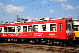rie17524