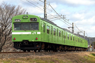 rie16893