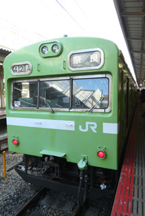 rie18591