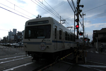 rie24484