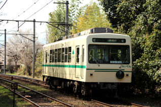 rie17245