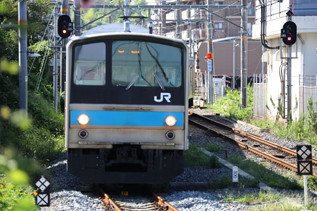 rie18178