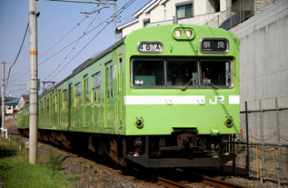 rie17339-184