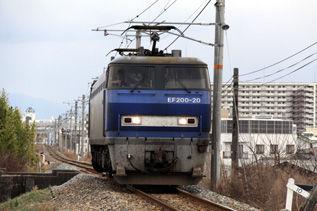 rie3285.jpg