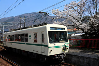 rie17244