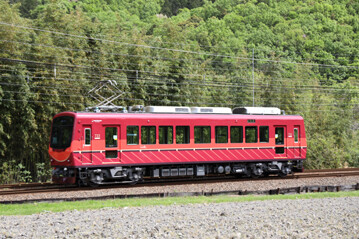 rie23036