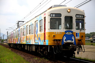 rie17538